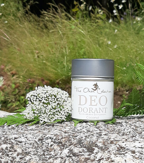 The Ohm Collection Deo Dorant Coconut